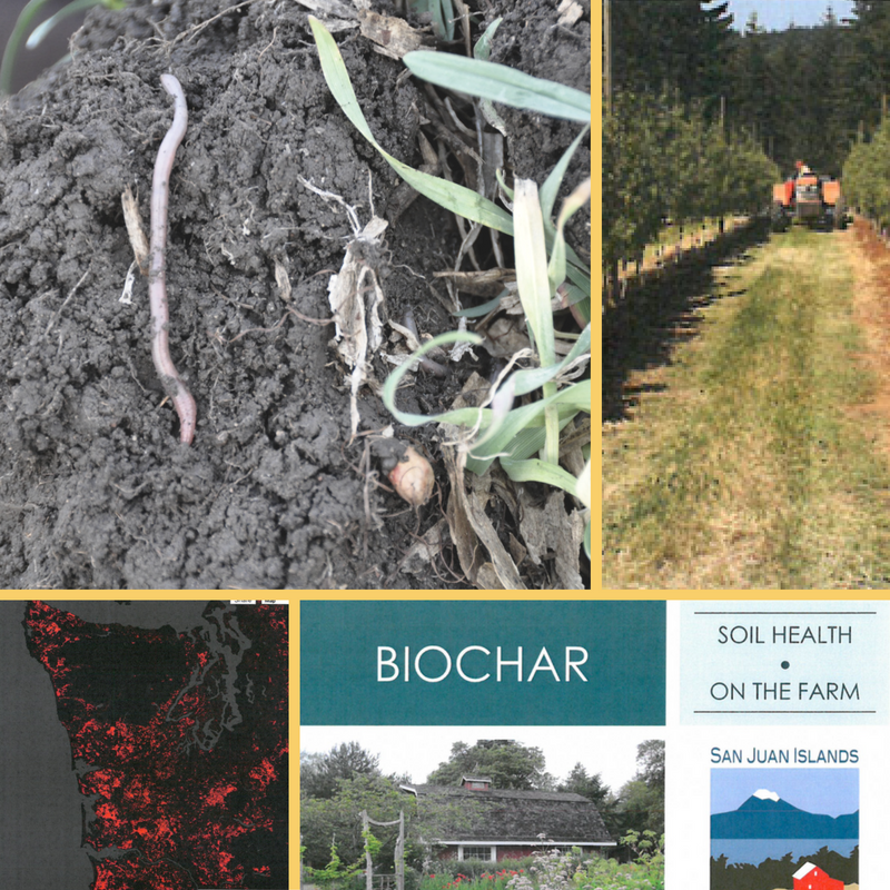 A Year of Soil Health Projects and Progress